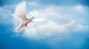 Jesus was deur die Heilige Gees toegerus