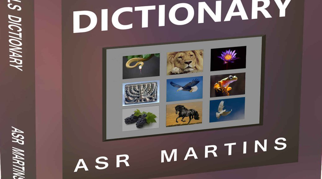 ASR Martins Dreams Dictionary book cover